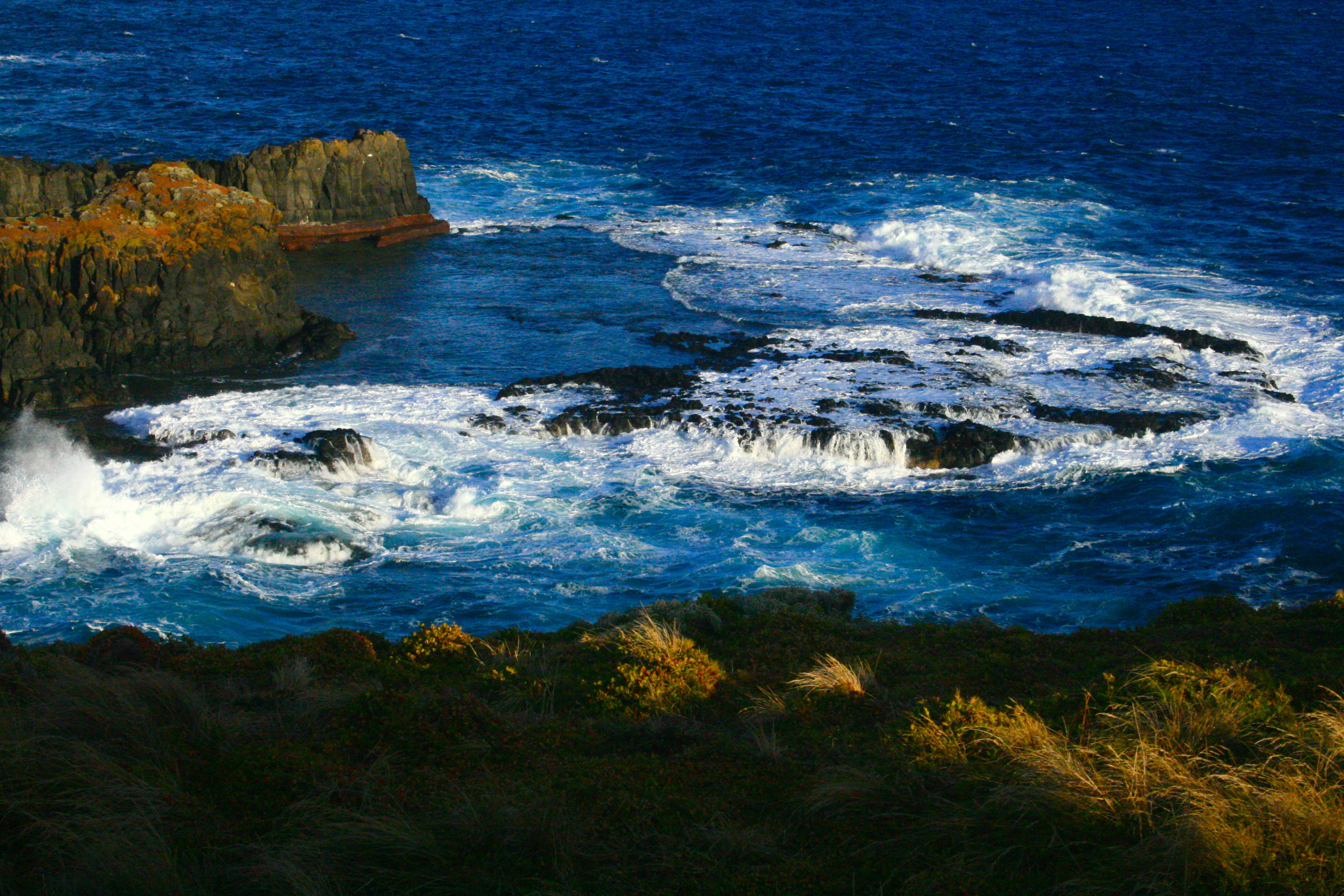Phillip Island Australia  city photos : Phillip Island Nature Park, Australia